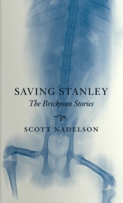 Cover of Saving Stanley